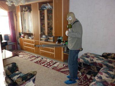 дезинсекция клопов в квартире