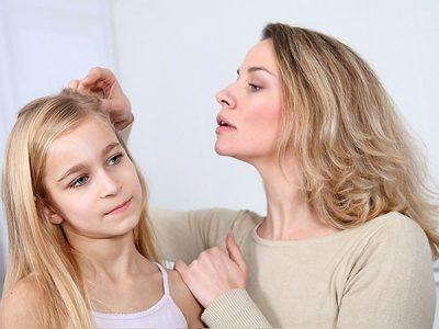 интересные факты о различных видов вшей