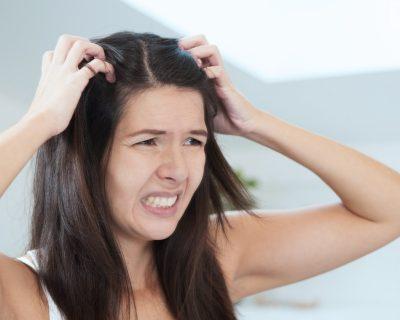 чешется голова перхоть или гниды